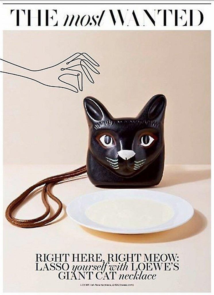 most-wanted-loewe-cat.jpg